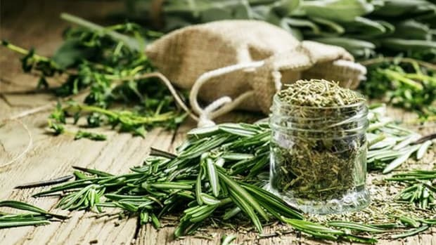 substitute-dried-rosemary-for-fresh-how-to-dry-rosemary