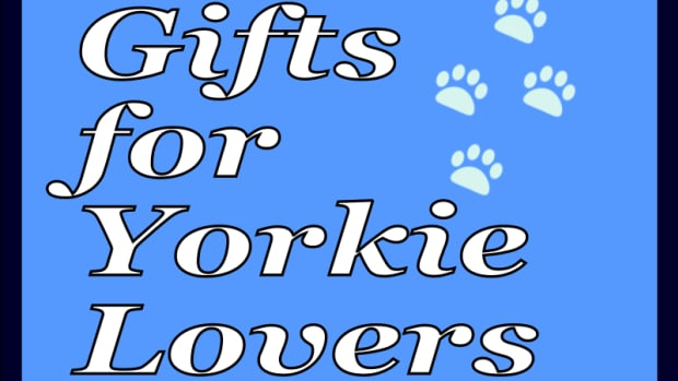 gifts-for-yorkie-lover