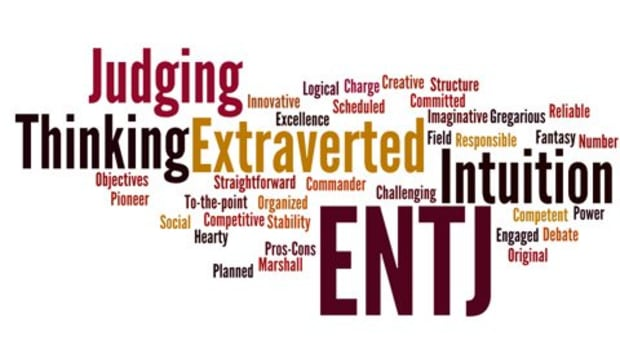 26-struggles-of-the-entj-myers-briggs