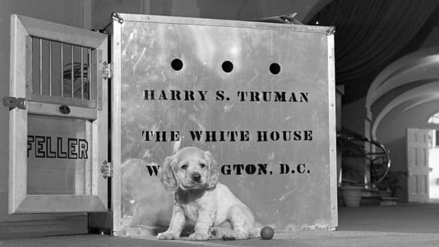 a-history-of-white-house-pets-1945-present