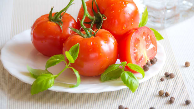 tomatoes-historical-highlights-fruit-facts-and-flavour-news