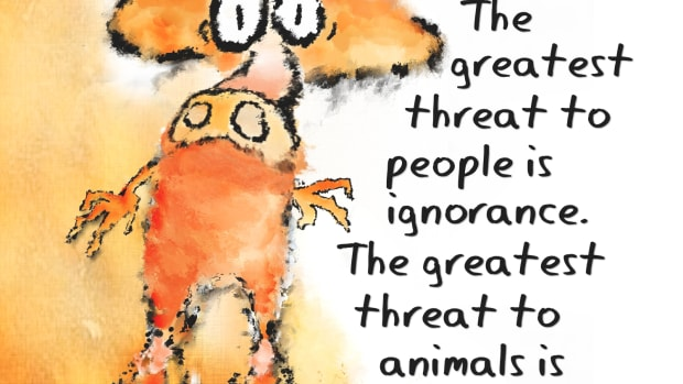 an-analysis-of-tom-regans-animal-rights-human-wrongs
