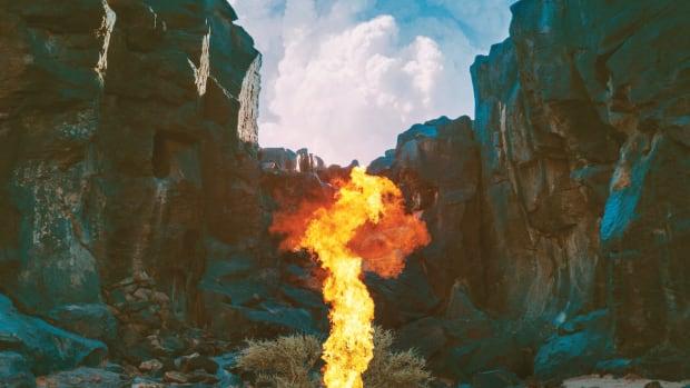 review-bonobos-album-migration
