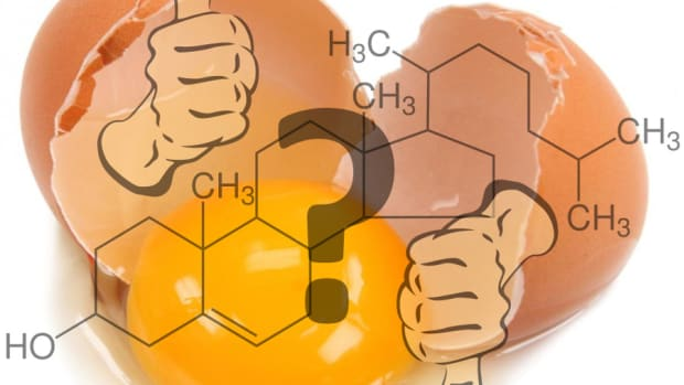 questions-about-egg-cholesterol-resolved-by-modern-research