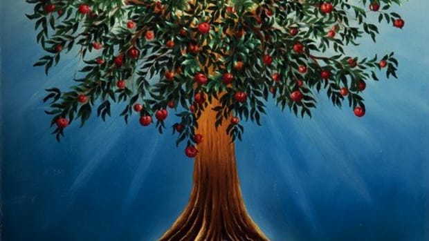 proverbs-and-the-tree-of-life