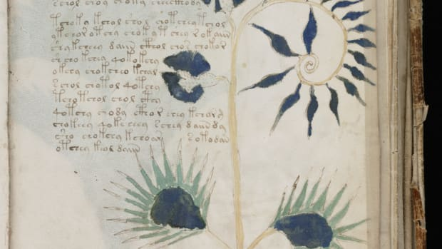 the-riddle-of-the-voynich-manuscript
