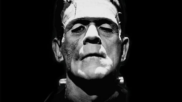 the-nature-of-the-monstrous-in-frankenstein-and-metamorphosis