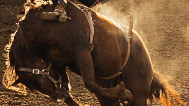 bucking-horse-help
