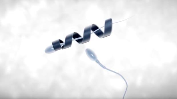 spermbots-the-future-of-in-vivo-fertilisation