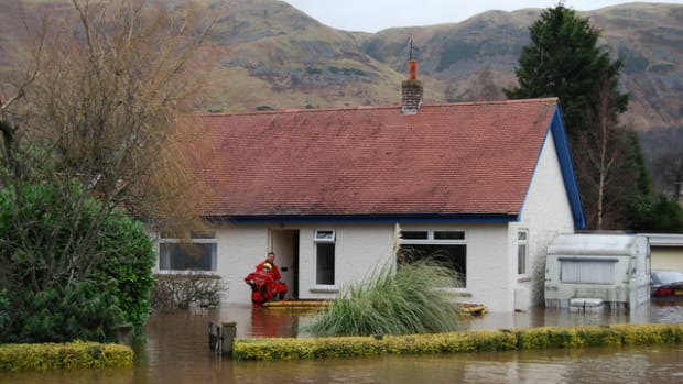 什么 - 业主 - 应该是洪水