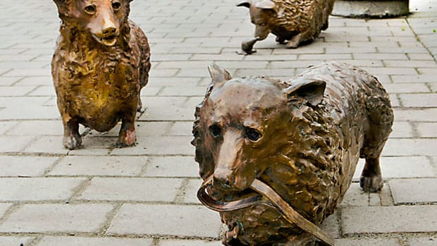 poems-for-may-corgis-in-christchurch-new-zealand-2-poems-facts-about-the-sculptures-more-on-corgis-bronze