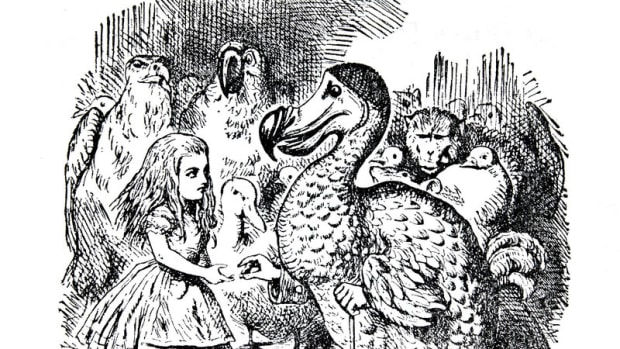 alices-animals-lewis-carroll-use-of-animals