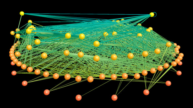 a-philosophical-of-theoretical-food-web-ecology