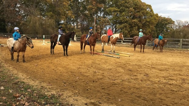 using-your-lesson-horses-to-the-best-of-your-ability-to-teach-confident-riders