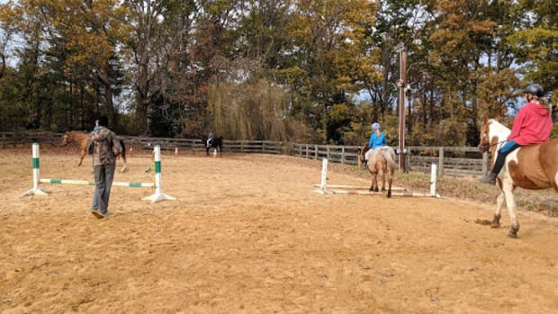 how-to-be-a-superstar-barn-parent