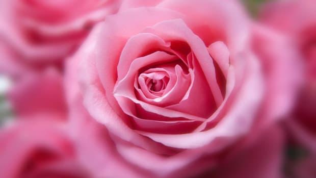 the-door-to-your-heart-a-love-poem