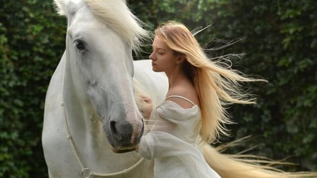 15-names-for-horses-from-chinese-mythology