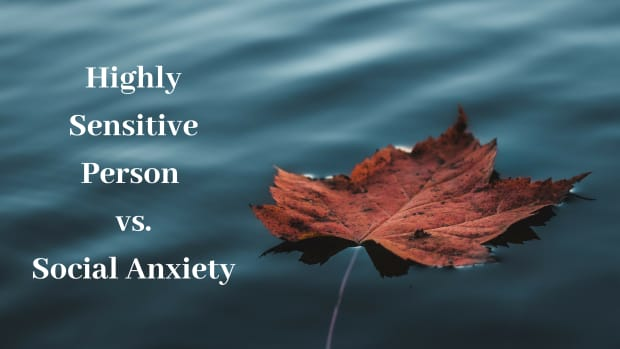 hsp-life-no-being-highly-sensitive-does-not-mean-i-am-socially-anxious