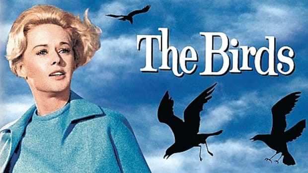 the-birds-1963-film-review