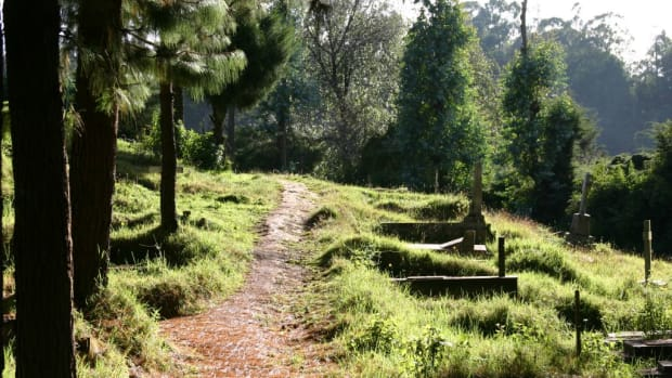 top-places-to-visit-in-ooty