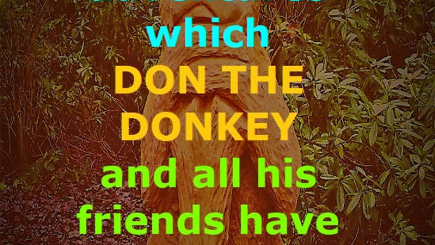 don-the-donkey