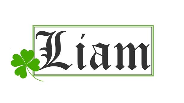 the-origin-of-the-name-liam