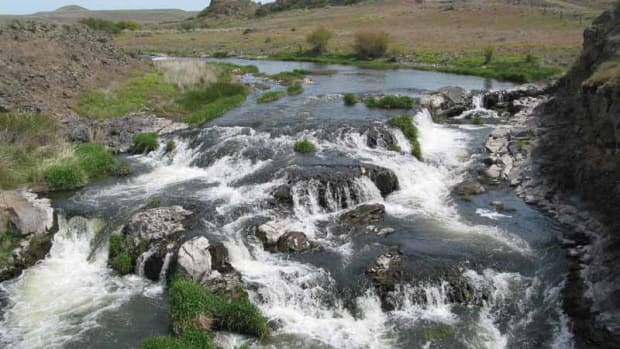 fly-fishing-the-palouses-rock-creek