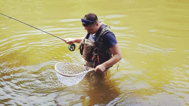 complete-guide-on-fly-fishing-for-chub