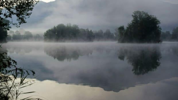 """Fog on the Pone"""