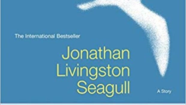 review-jonathan-livingston-seagull