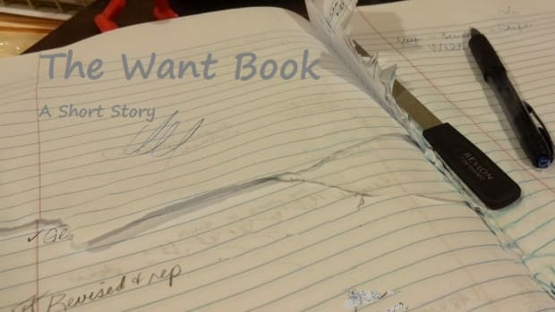 the-want-book-mystery