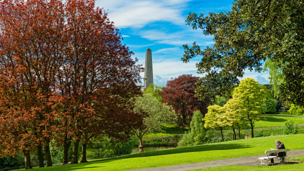 the-beautiful-and-surprising-phoenix-park-dublin