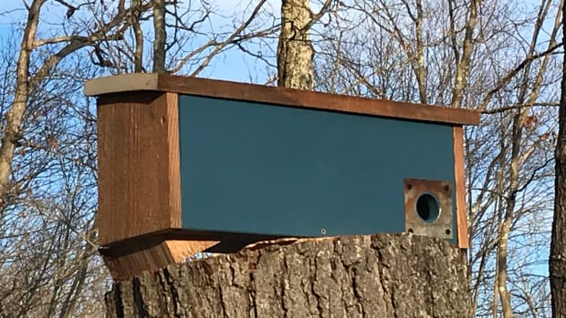 barnwood-birdhouse-plans-how-to-build-a-winter-roosting-box-for-the-birds