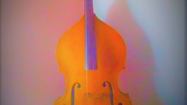 string-bass-double-bass-fiction