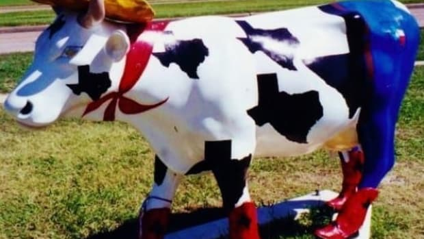 cow-parade-fun-in-houston-texas-it-was-moovelous