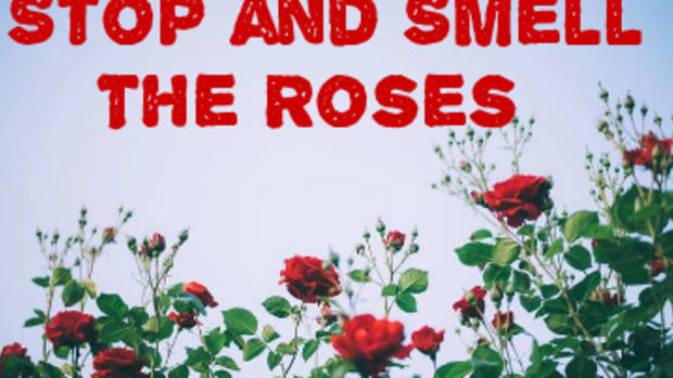 poem-stop-and-smell-the-roses