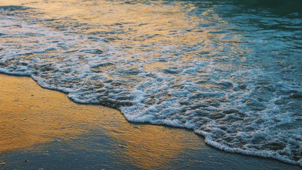 loves-estuary