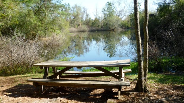 theis-attaway-park-small-nature-center-in-tomball-texas