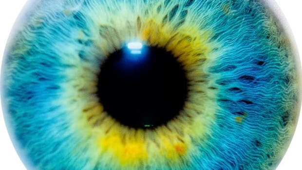 does-eye-color-indicate-intelligence-and-personality-traits