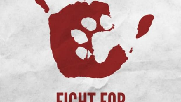 an-analysis-of-animal-rights-and-peter-singers-animal-liberation