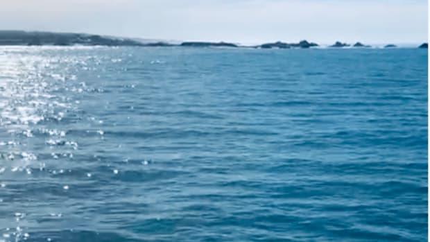 swim-against-the-waves-poem