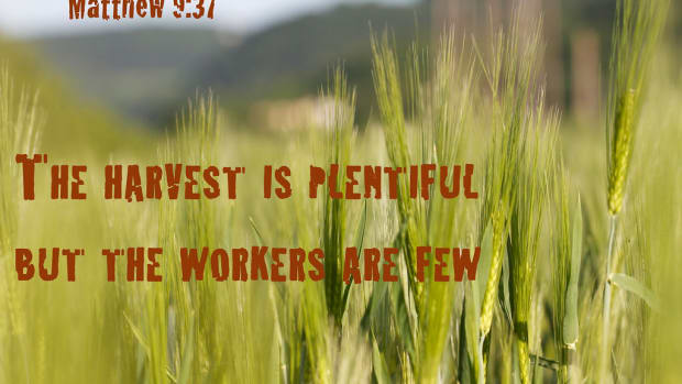 a-hymn-the-harvest-truly-is-plenteous-but-the-labourers-are-few