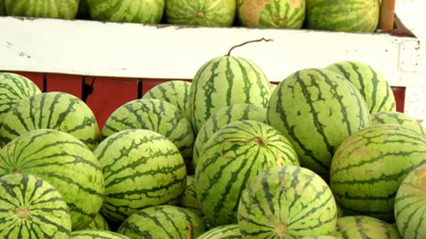 how_to_pick_a_good_watermelon