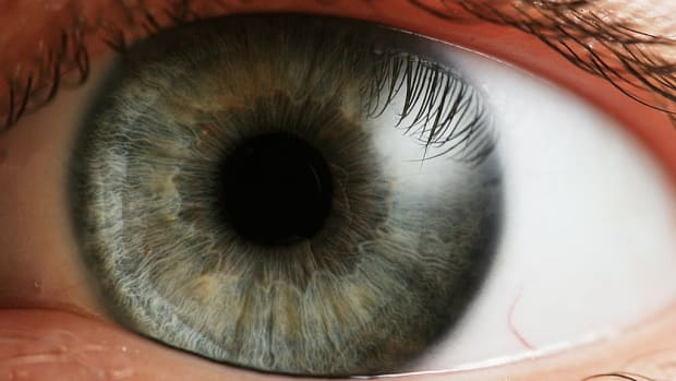 8-best-fruits-and-foods-for-glowing-and-good-eye-health