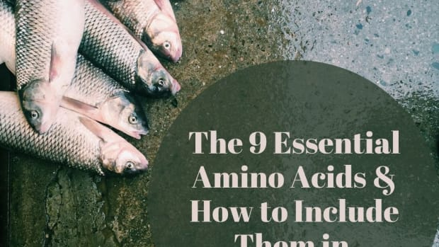 what-are-essential-amino-acids