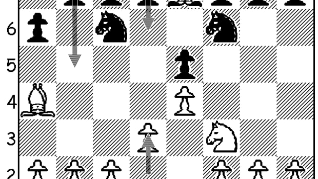 chess-openings-the-ruy-lopez-with-6-d3