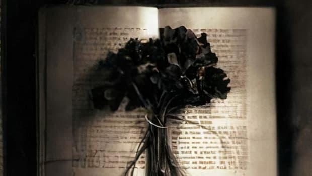 book-review-the-reader-by-bernhard-schlink