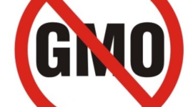 no-more-gmos-take-action