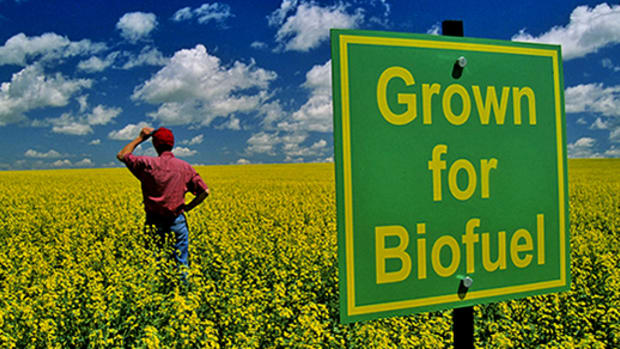 can-biofuels-replace-fossil-fuels