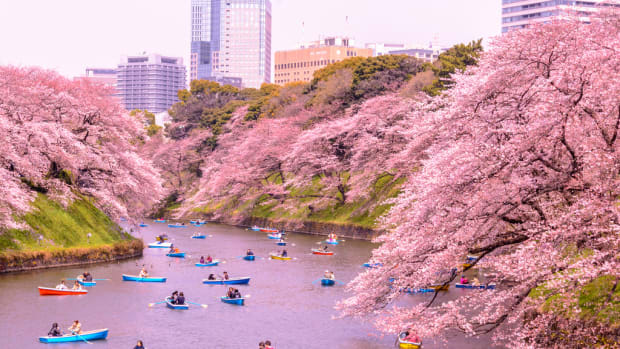the-pros-and-cons-of-living-in-japan